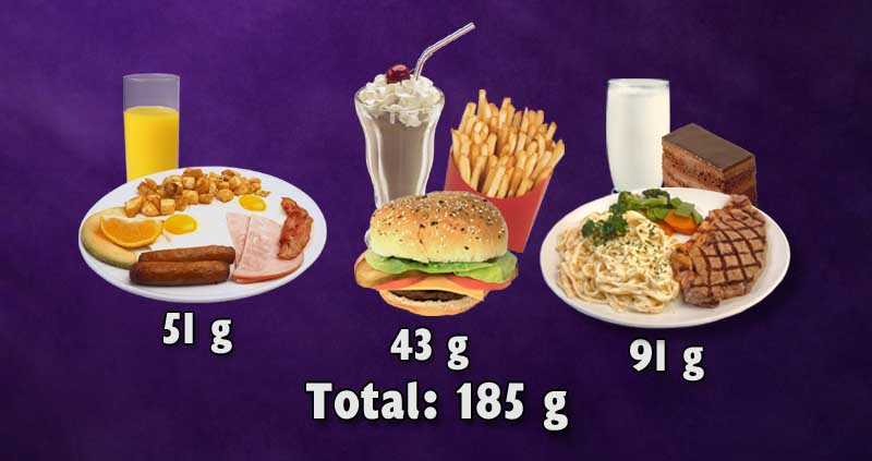 Three meals of a typical animal based diet resulting in 185g of protein.