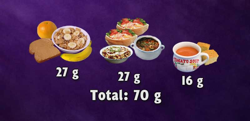 Three meals of a typical plant-based diet resulting in 70g of protein.