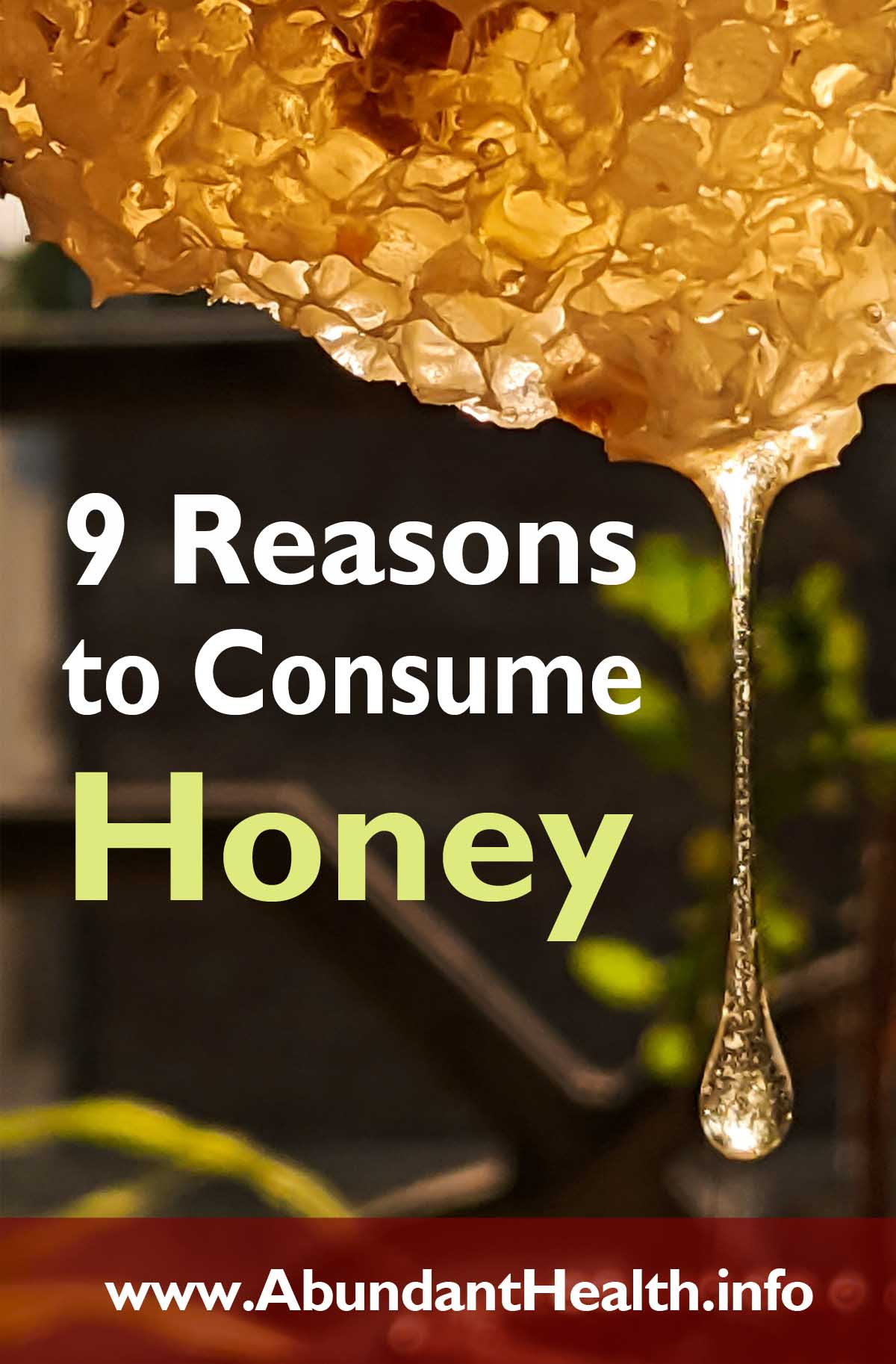9 Reasons to Consume Honey