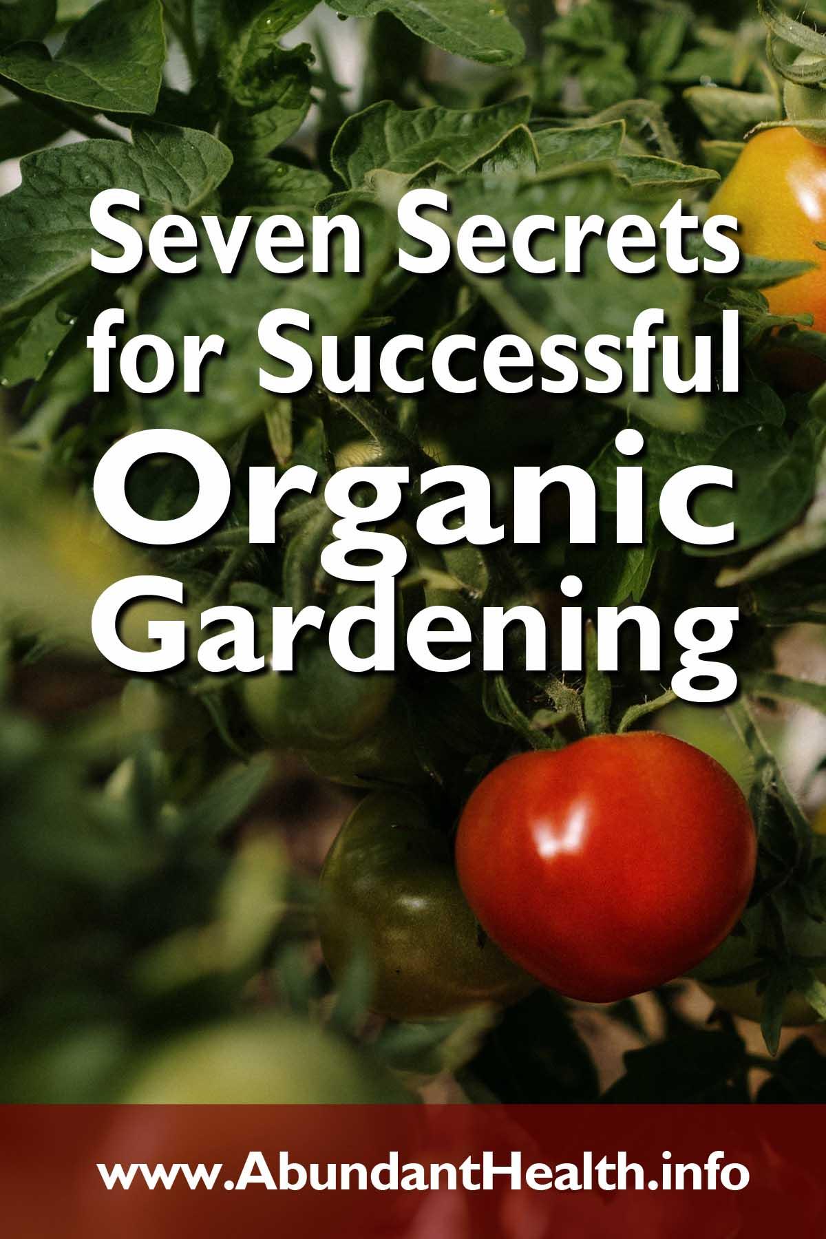 Seven Secrets for Successful Organic Gardening